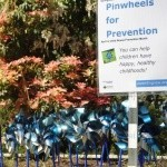 Springfield Public Library Pinwheels