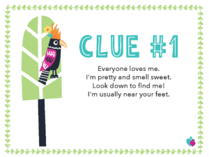 Clue 1 Picture