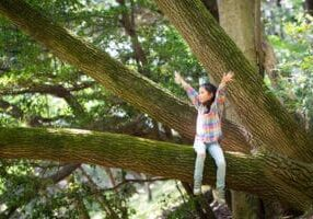 Girl climbing a tree and open her arms